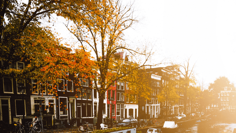 10 x hotspots in Amsterdam Oost