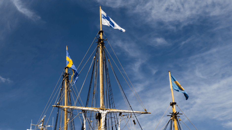 SAIL 2020 - Swedish flag.png